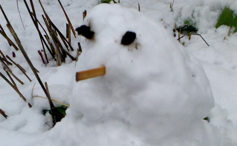 Winterfreuden?